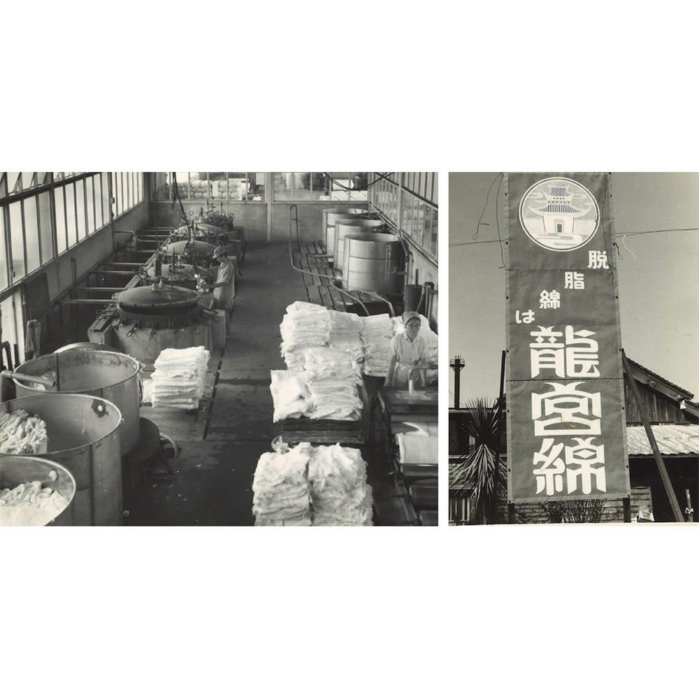 パシーマ(R)EX(先染めタイプ)シリーズ 限定色パープル キルトケット シングル (中央右・右)龍宮(株)旧脱脂綿工場