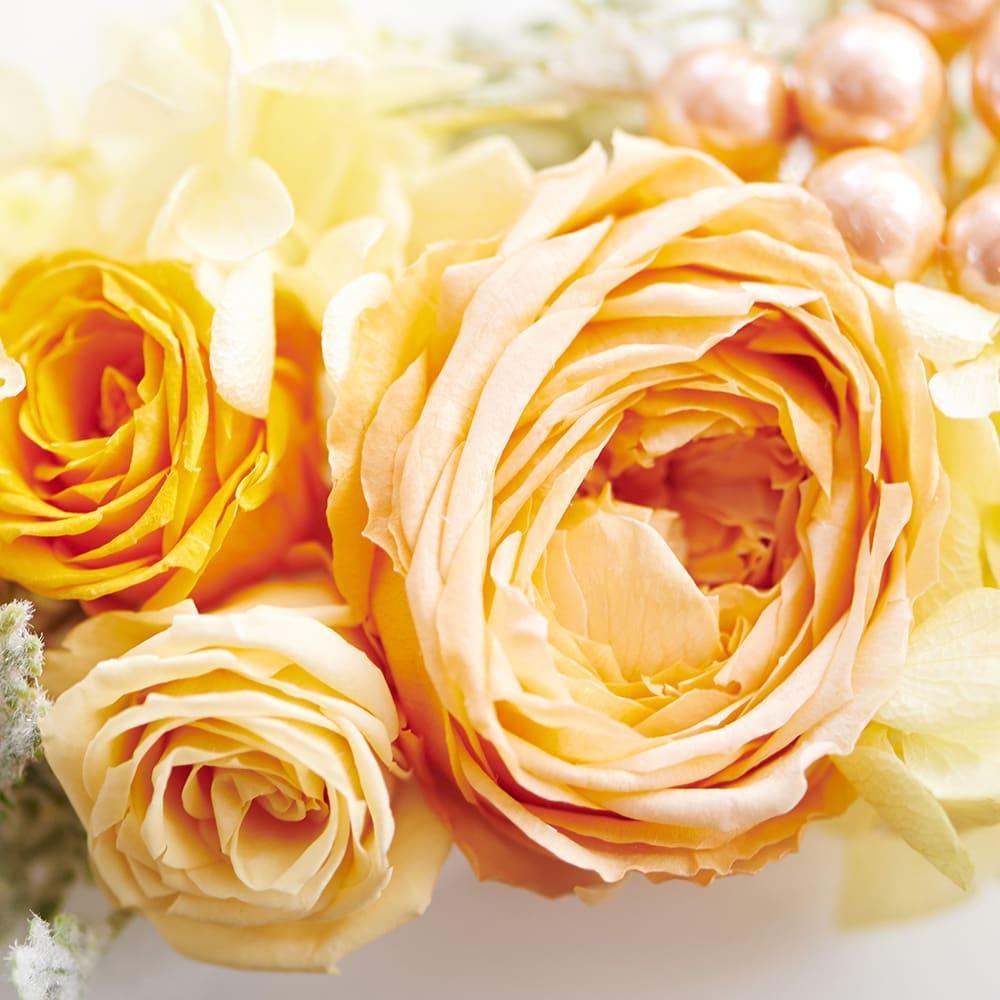 フォトボックス プリザーブドフラワー オレンジ系グラデーションの華やかなバラ