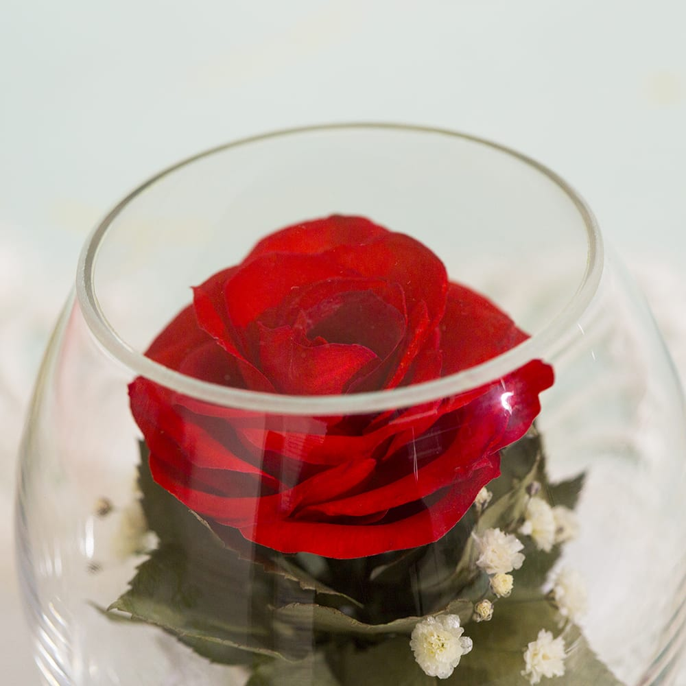 ドームフラワー Sサイズ ローズ レッド ドライ加工した生花となります