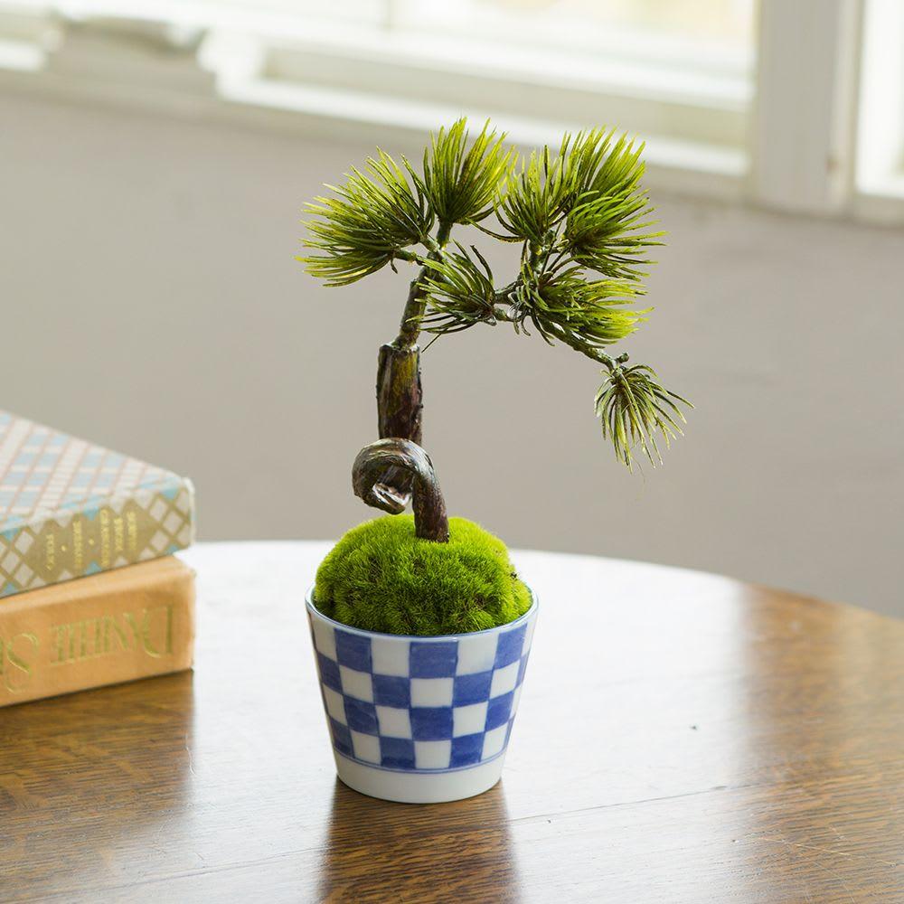 【CUPBON】 松吹き流し 美濃焼のそば猪口に入ったアーティフィシャルグリーンの盆栽・松