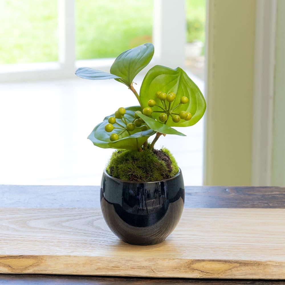 CUPBON 美濃焼藍色 サンキライ ツヤ感のある濃色の美濃焼の花器に活けたサンキライ