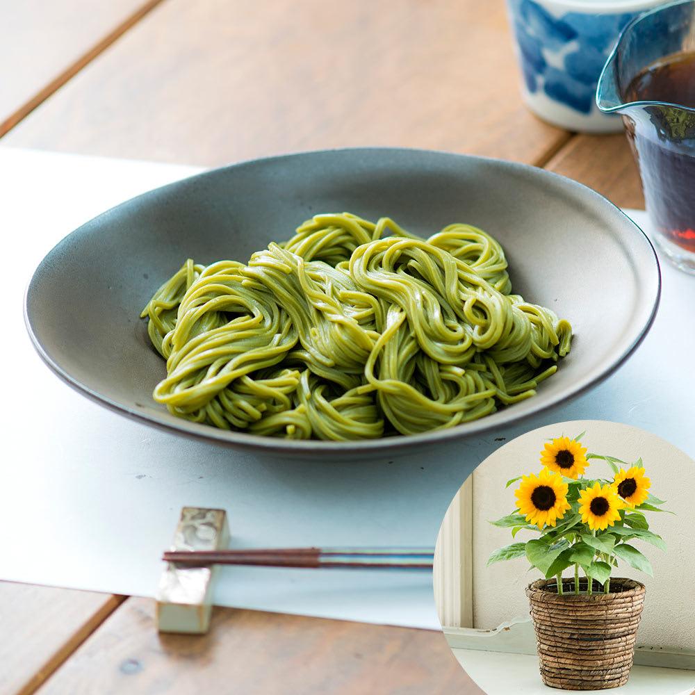 【父の日ギフト】浅草むぎとろ茶そば&ひまわり鉢植えセット 花ギフトセット