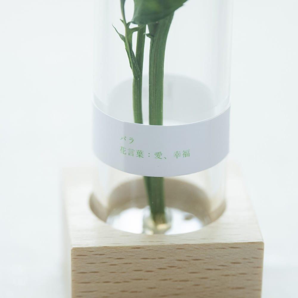 ボトルドライフラワー<リアン> (ウ)バラ 花言葉:愛、幸福