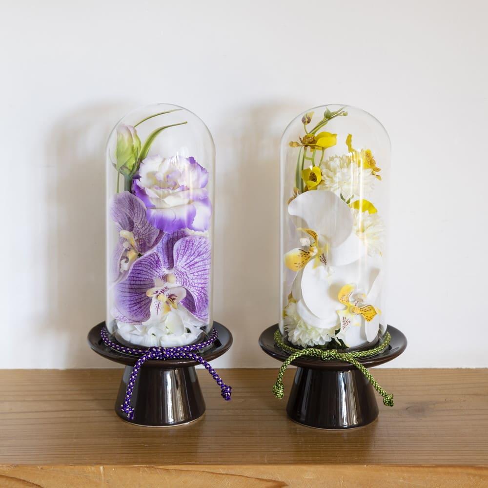 ガラスドームの供花 コチョウラン 大ぶりの胡蝶蘭が華やかな供花
