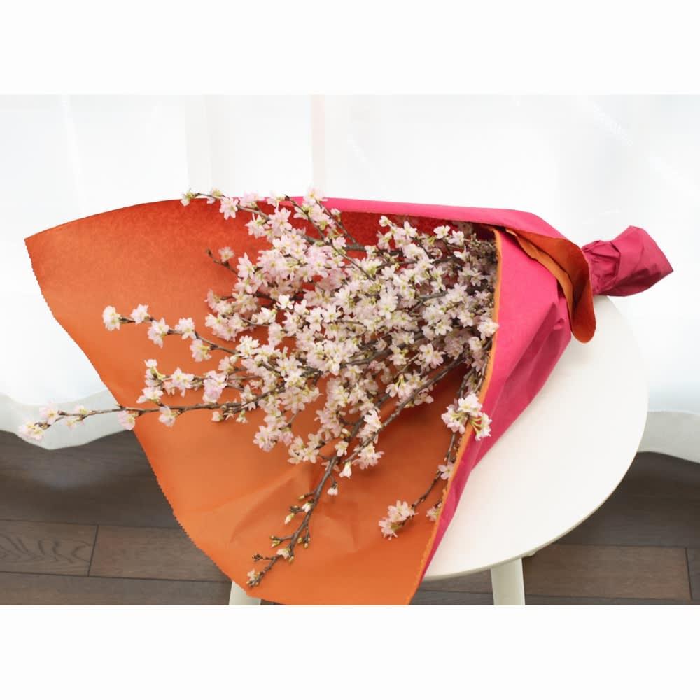 山形からの春便り啓翁桜8本(ミドル) 簡単に束ねるだけで、プレゼントにも。