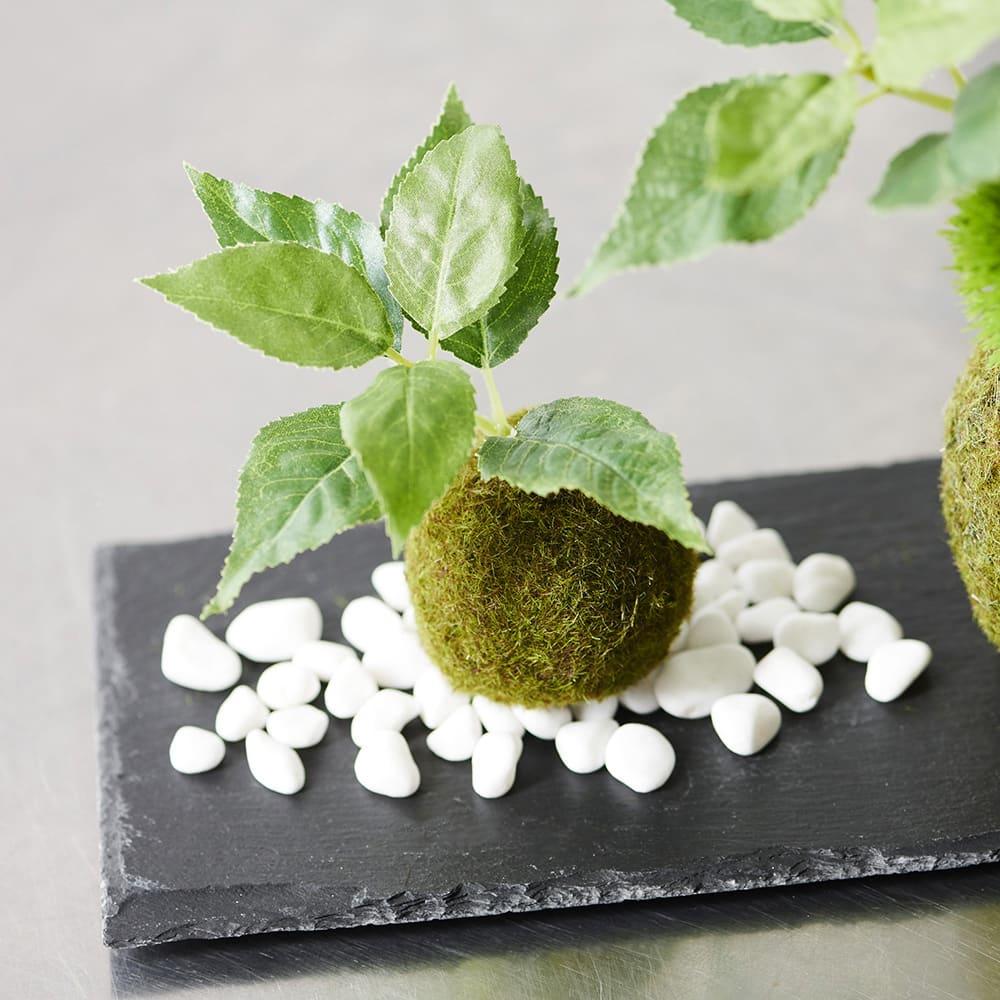 CUPBON カップボン 桜の葉 寄せ植え 苔玉 黒岩皿 盆栽 フェイクグリーン 人工観葉植物 造花 おしゃれ 和モダン ギフト 誕生日 日本製