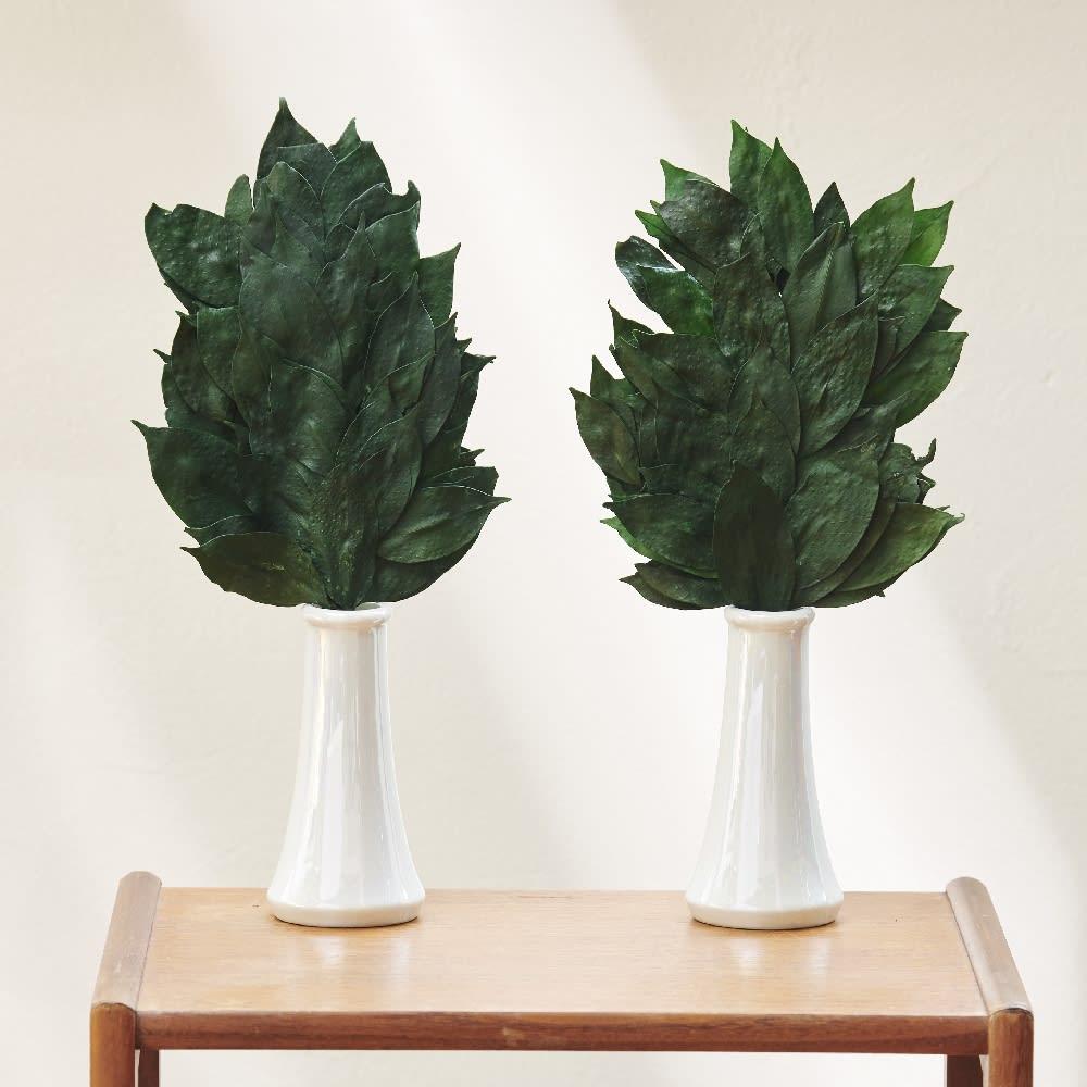 水やり水かえ不要 プリザーブド加工 「榊」 さかき 一対 Lサイズ 榊立て セット 造花 神棚 神具 お供え FP3714