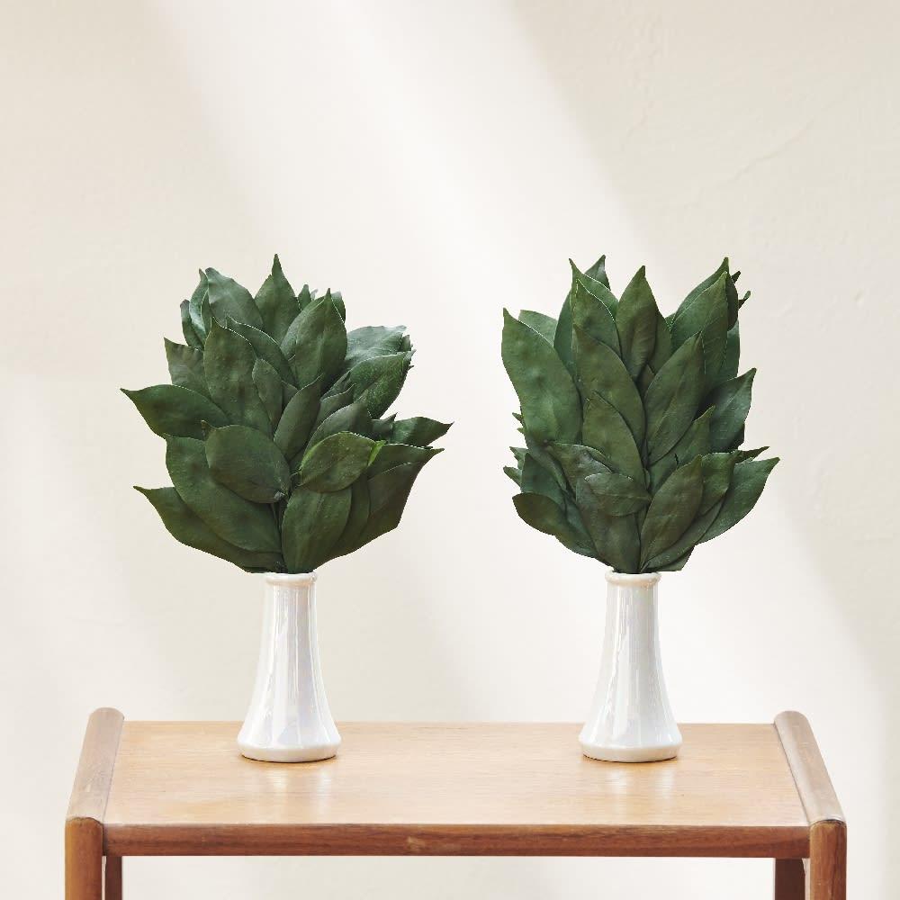 水やり水かえ不要 プリザーブド加工 「榊」 さかき 一対 Sサイズ 榊立て セット 造花 神棚 神具 お供え FP3716