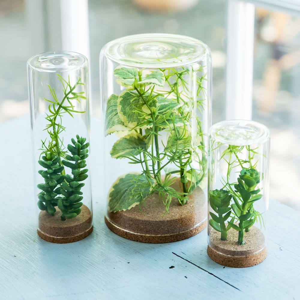 グリーンテラリウム 3種 セット フェイクグリーン アーティフィシャルグリーン 人工観葉植物  ギフト プレゼント 誕生日 日本製 FP3722