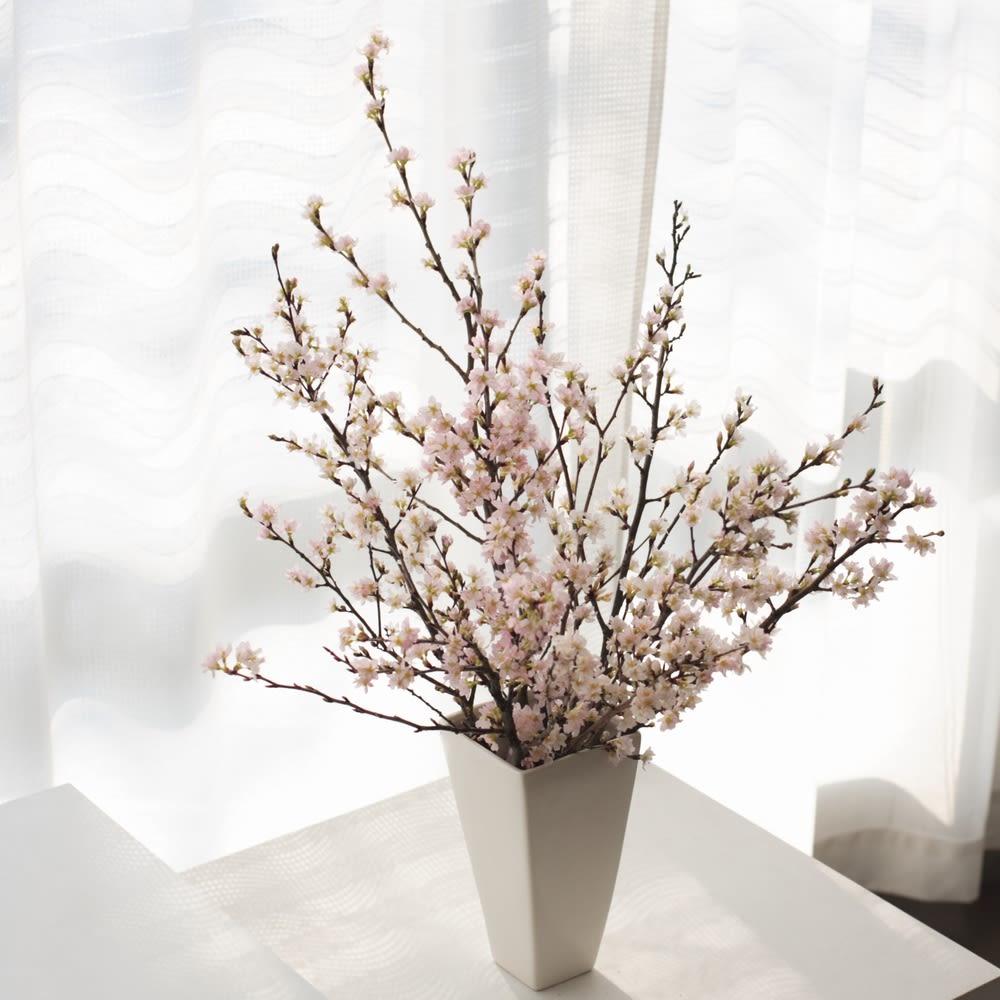 啓翁桜 ミドルサイズ 12本 お歳暮 のし付き 生花 ピンク 冬 ギフト プレゼント 新春 迎春 お正月 誕生日 FP4308