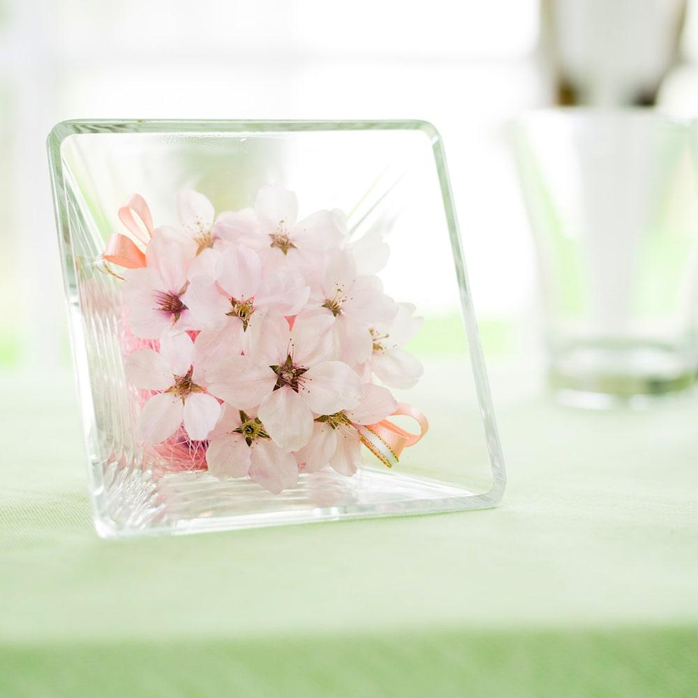 桜 アレンジ ガラスケース入り ドライフラワー 春 ピンク インテリア サクラ ギフト プレゼント 誕生日 日本製 咲き誇る桜で春をいつでも楽しんで。