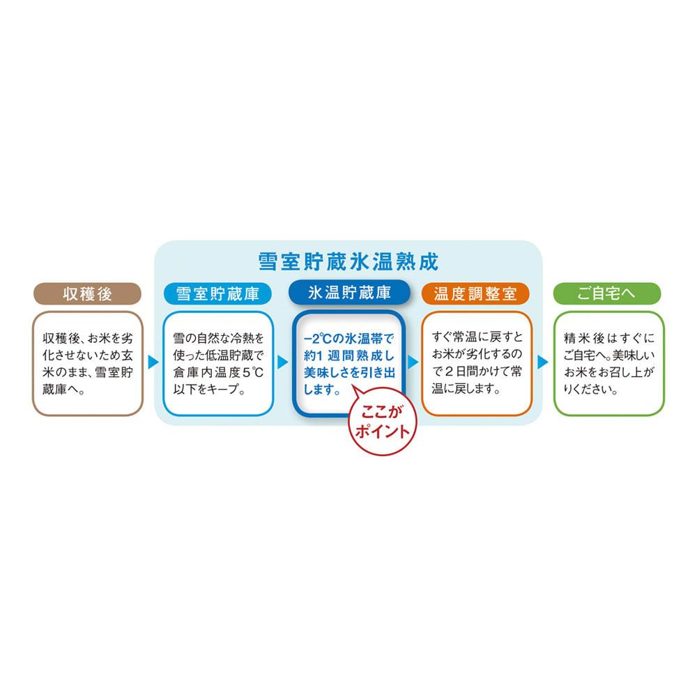 氷温熟成 魚沼産こしひかり ギフト3個セット(選べるのしタイプ)