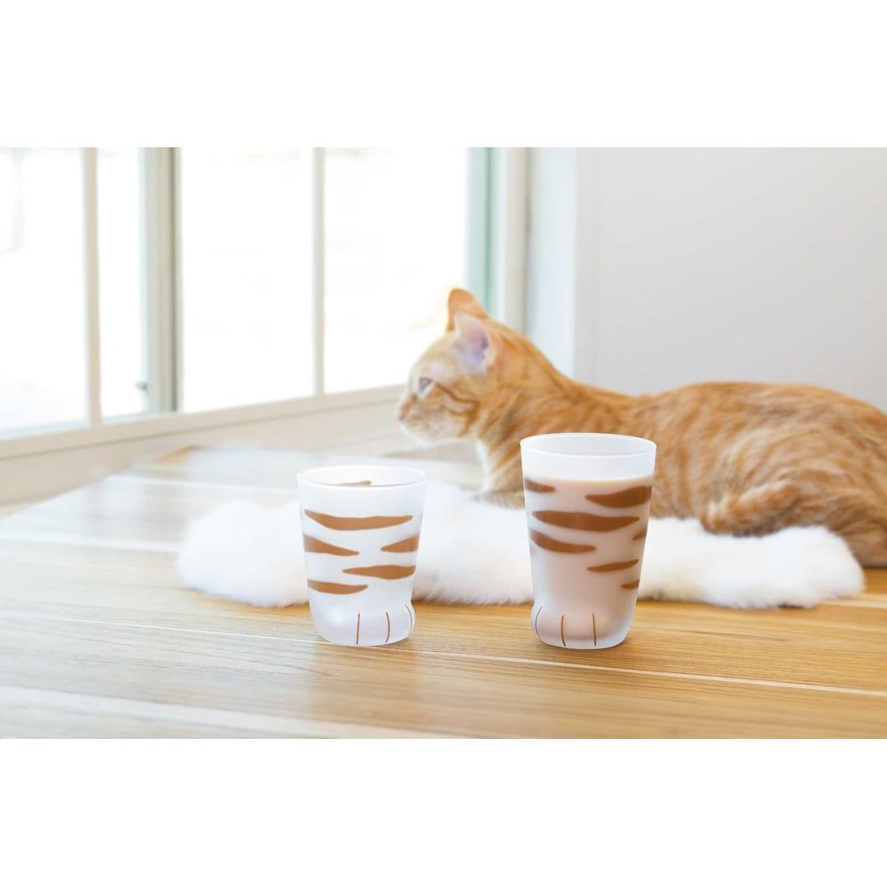 coconecoグラス(親猫) (イ)トラ ※左の商品は、子猫グラス(申込番号GF0144)です