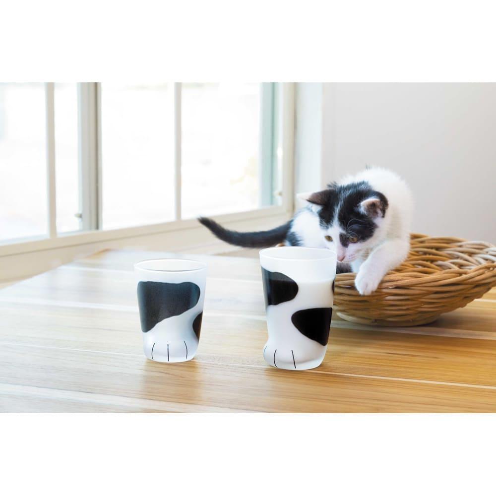 coconecoグラス(親猫) (ウ)ブチ ※左の商品は、子猫グラス(申込番号GF0144)です