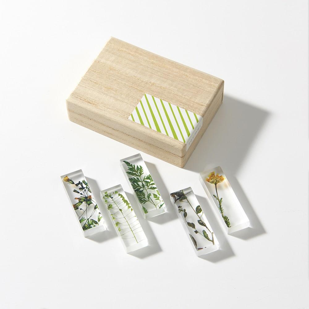TOUMEI 箸置きセット 押し花 (ア)A ※裏面 ※パッケージのシールデザインは変更になる場合がございます