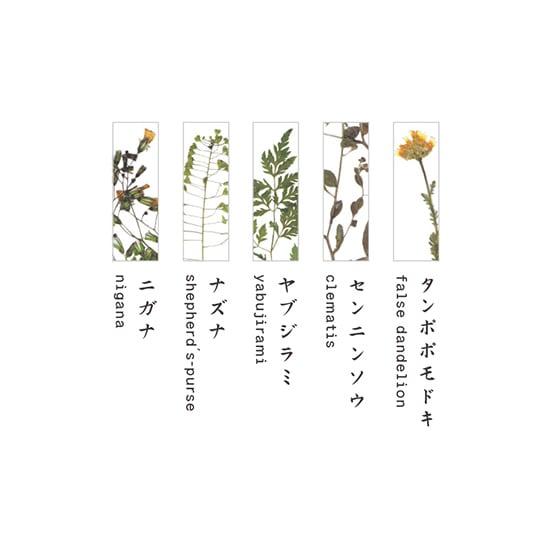 TOUMEI 箸置きセット 押し花 (ア)A