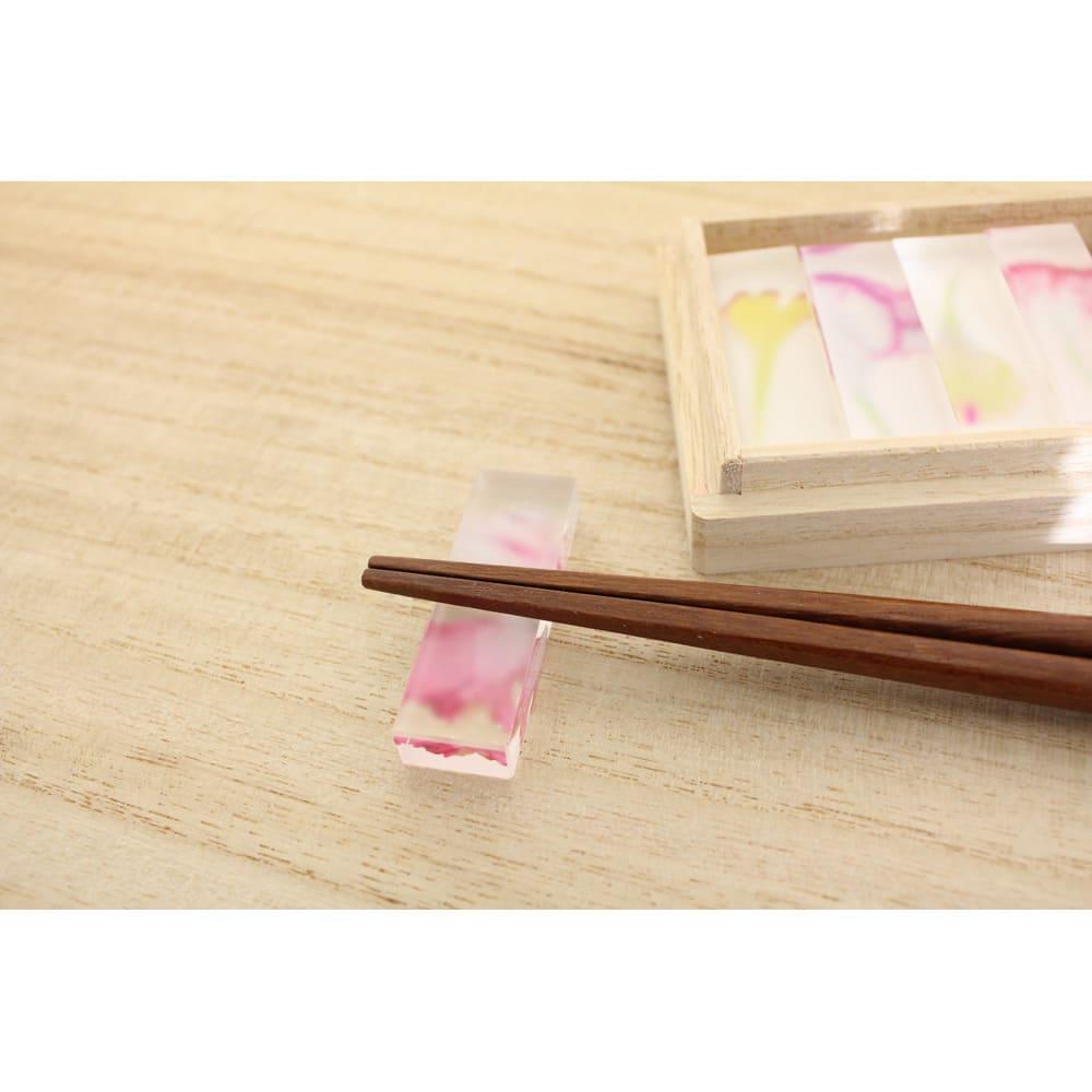 TOUMEI 箸置きセット 押し花 カーネーション