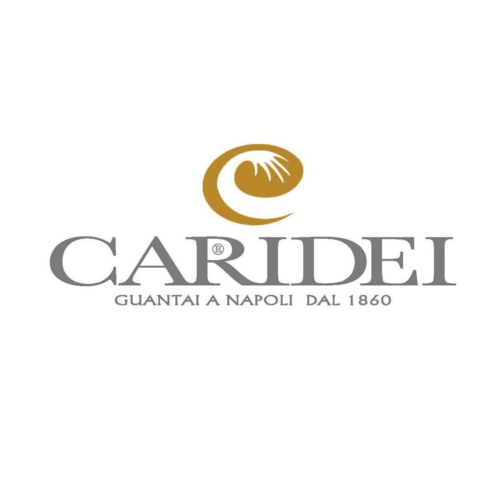 イタリア製 CARIDEI(カリデイ)<br />タッチパネル対応レザーグローブ 男性用