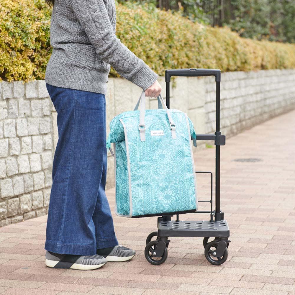 カインドケア/FINLAYSON 横押しカート カートとバッグは取り外し可能。