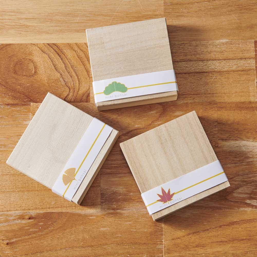 Toumei/トウメイ 盆栽 パッケージもおしゃれでプレゼントにも。