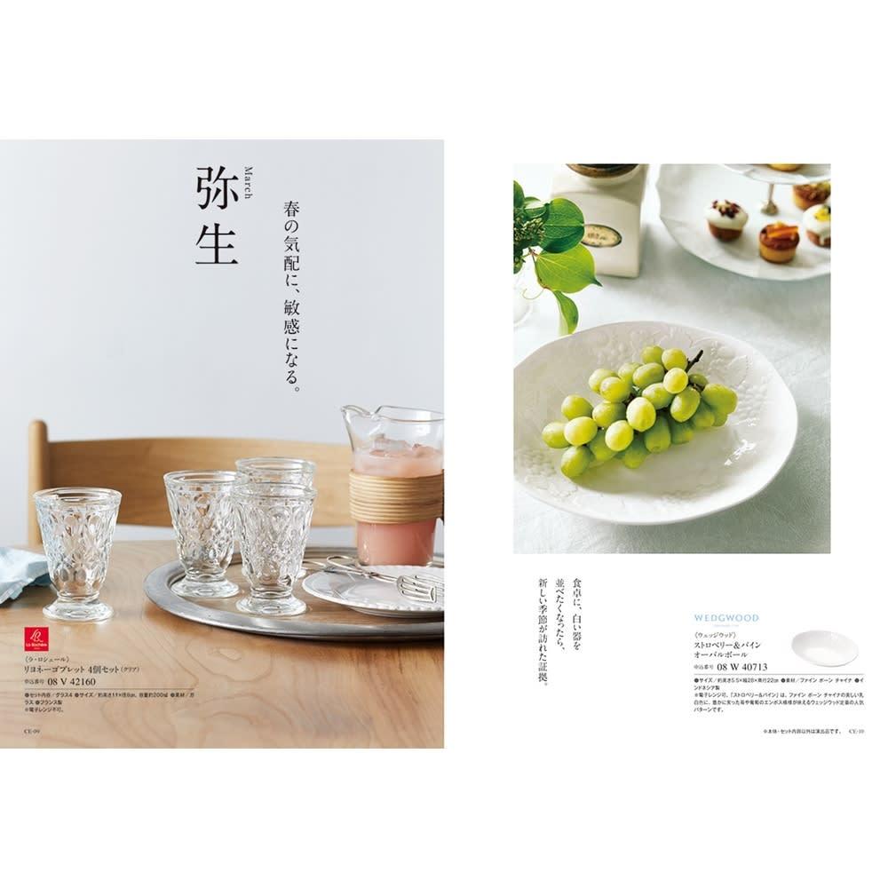 [カタログギフト]沙羅・木蓮