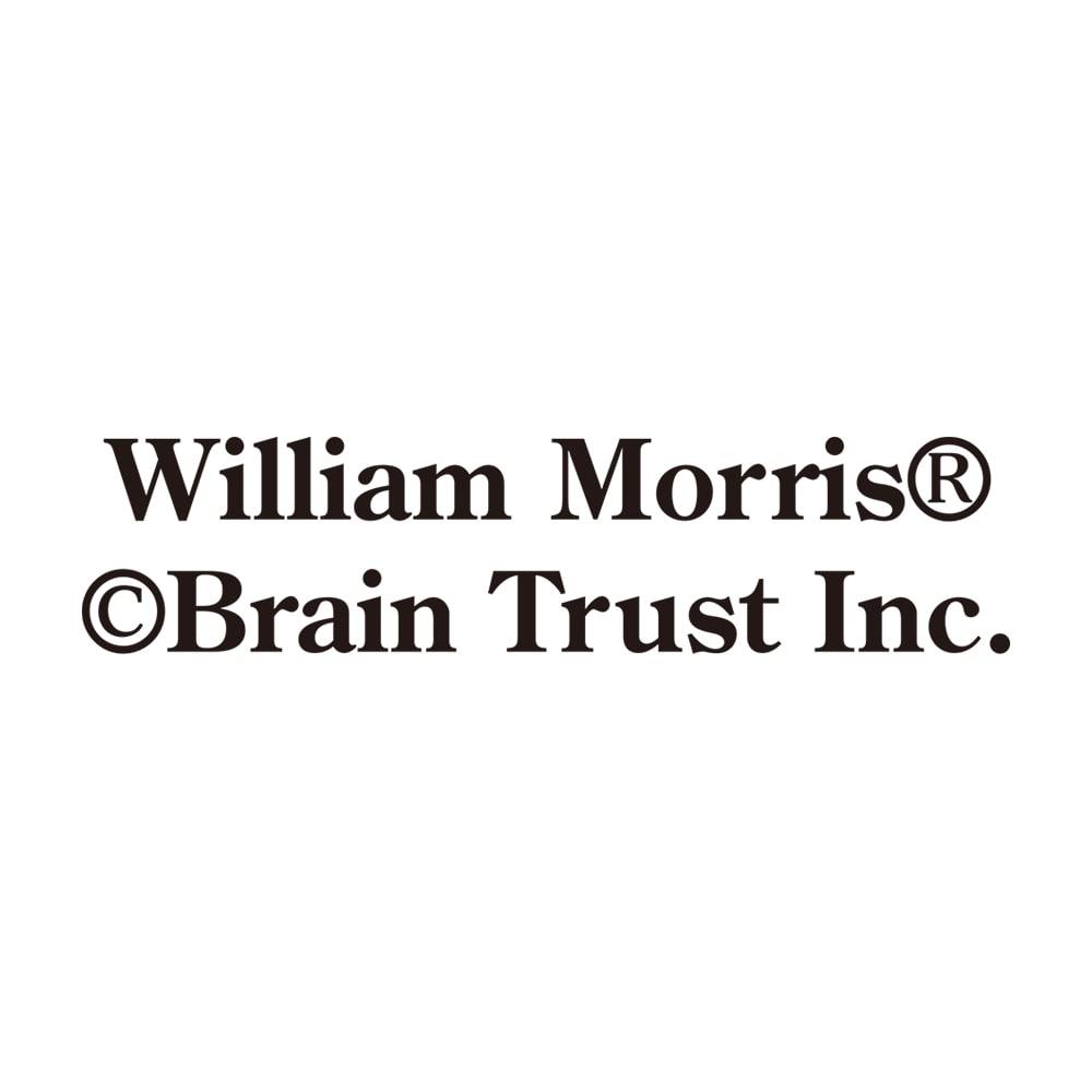 【名前オーダー】5年日記ウィリアムモリス