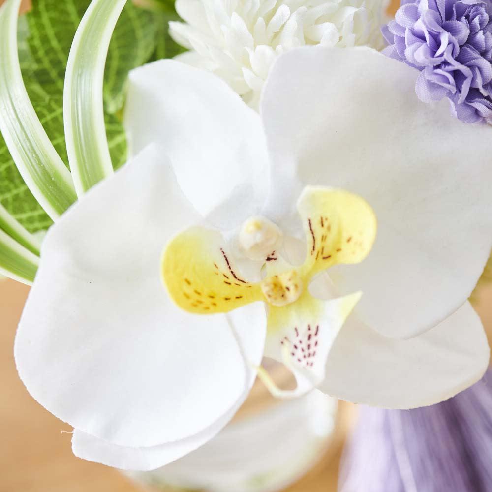 胡蝶蘭マジックウォーターミニ供花