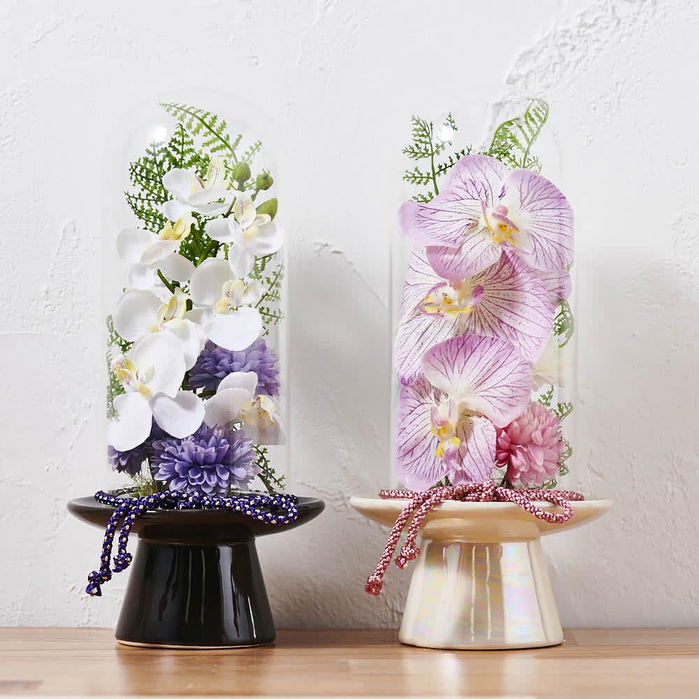 ガラスドームの供花胡蝶蘭         左から(ア)ホワイト(ベースの色はブラウン)、 (イ)ピンク(ベースの色はパール)