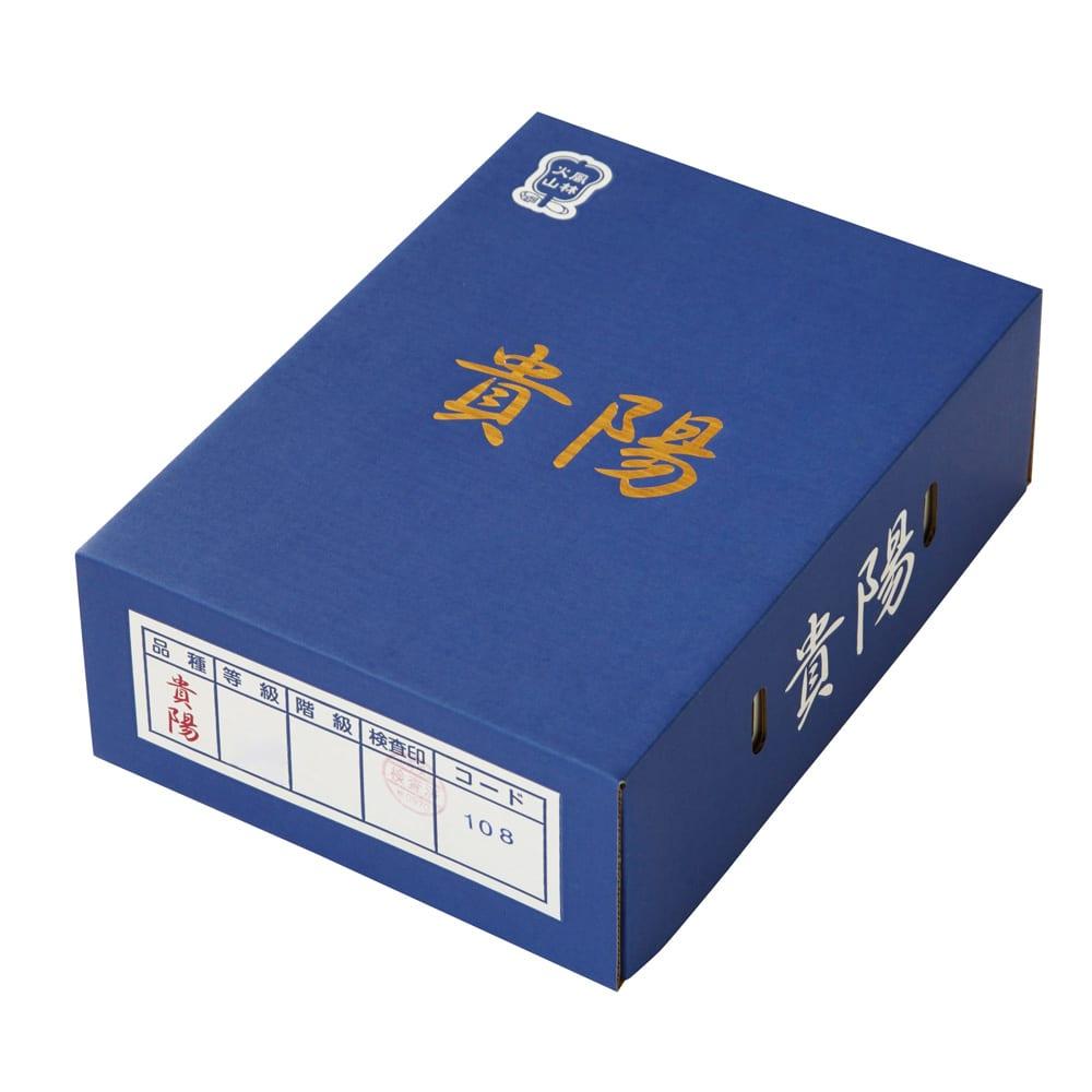 山梨産 すもも「貴陽(きよう)」 (約1.5kg) 【通常お届け】