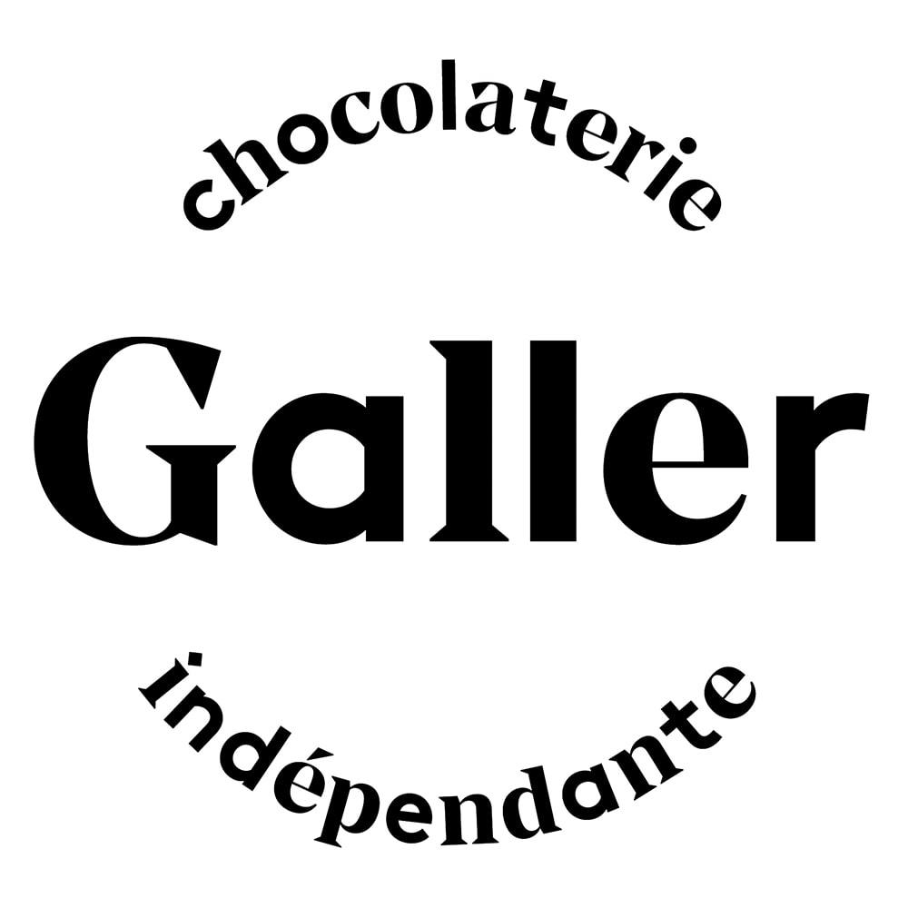 「ガレー」ミニバー 11種24個 【通常お届け】 1976年にベルギー・リエージュで創業した「ガレー」。1994年に「ベルギー王室御用達ブランド」に認定され、厳選した素材のみを使用し、伝統的なベルギーのレシピを守りながら革新的かつ創造的なチョコレートを作り続けています。