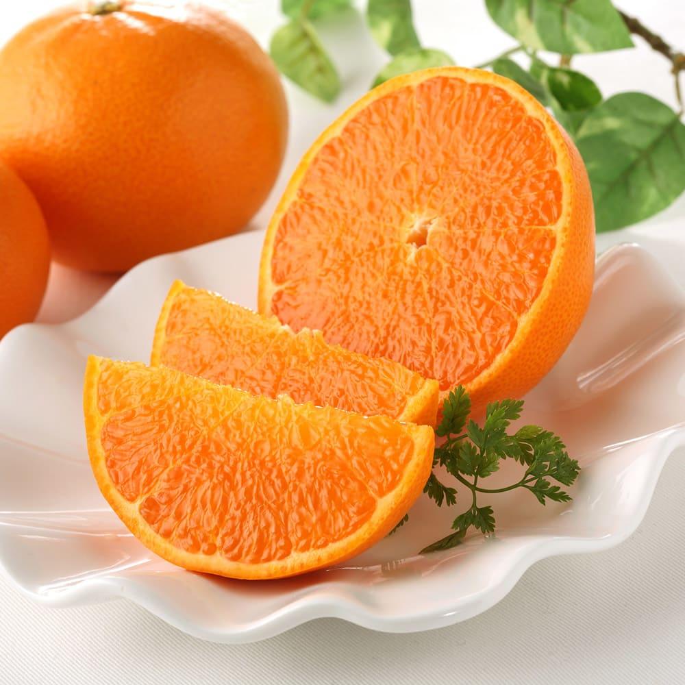 グルメ 食品 野菜 果物 フルーツ 愛媛県西宇和産 お買い得せとか (5kg) FD2902