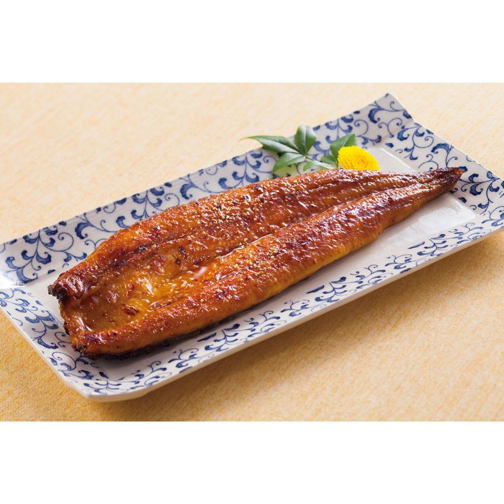 鹿児島県産うなぎ蒲焼(長焼) 100g×2袋 魚・海産加工品