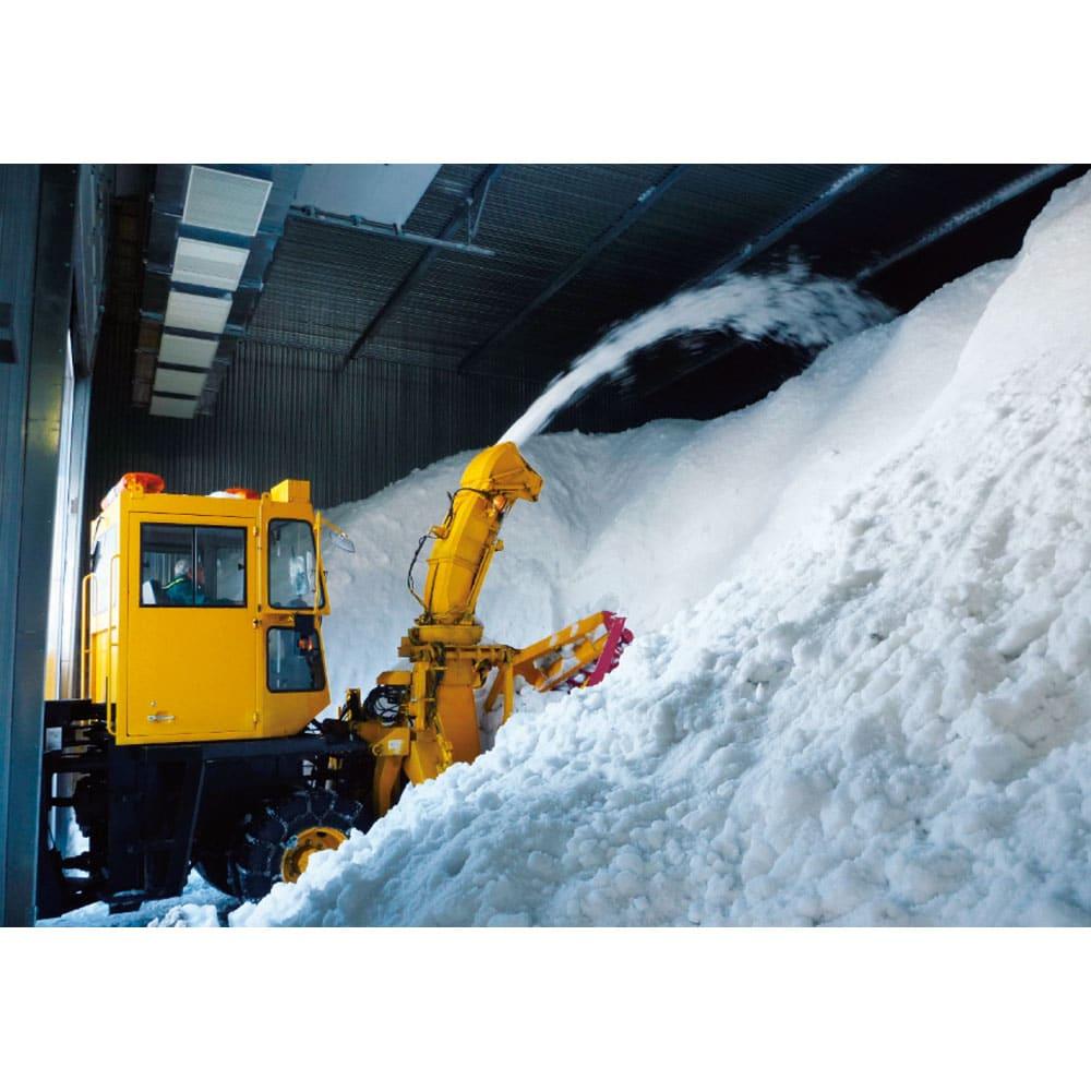 <25周年記念特典付き>魚沼産こしひかり 一等米 精米 or 玄米 8kg(2kg×4袋) 【定期便】 冬の間に大量の雪を積み込みます。