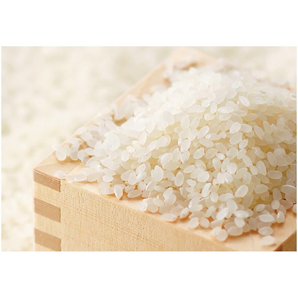 <25周年記念特典付き>魚沼産こしひかり 一等米 特別栽培米 4kg(2kg×2袋) 【定期便】 産地から精米したてをご自宅に。