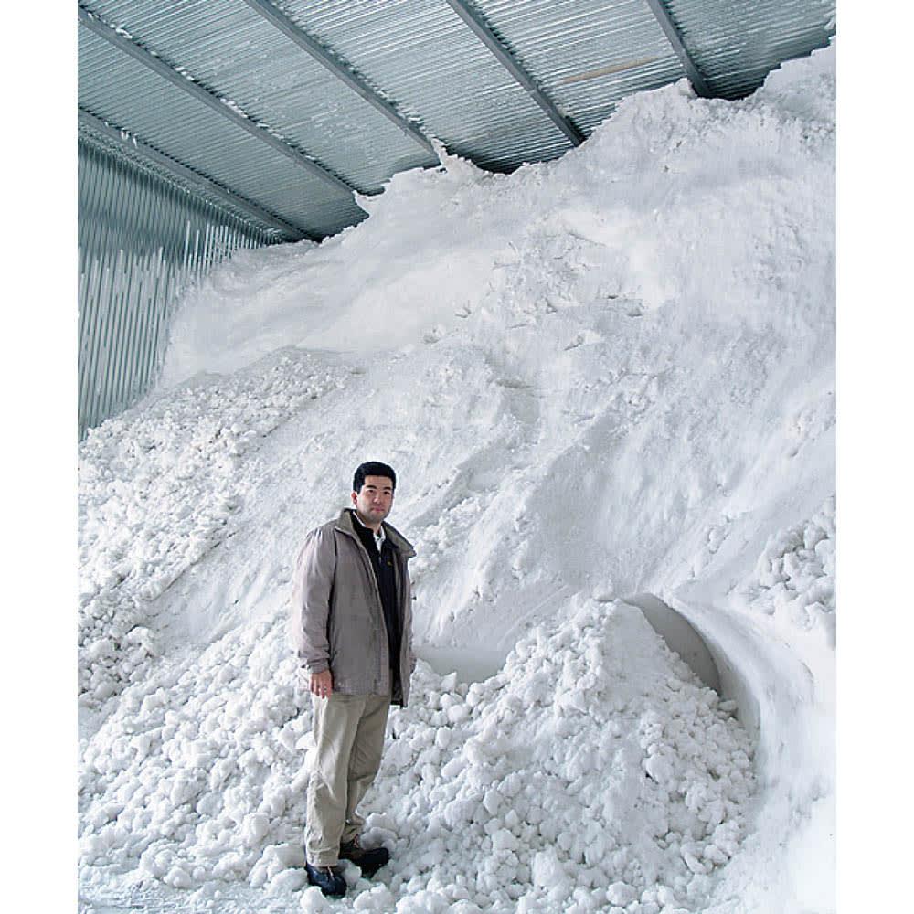 魚沼産こしひかり 一等米 SS米限定 「氷温熟成米」プレミアム 4kg(2kg×2袋) 【定期便】 新米の美味しさを保つ雪室貯蔵