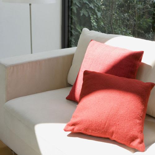 日革研究所製「ダニ捕りロボ」 ラージサイズ 5枚組(ソフトケース大5枚付き) ソファーの下に。
