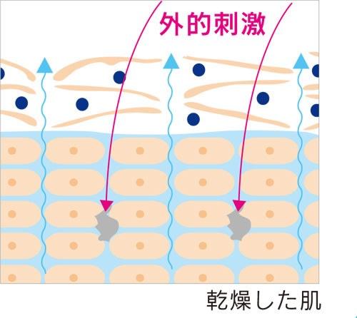 かづきれいこ イデアモイスト エッセンス 50ml (美容液) 乾燥は肌悩みの原因