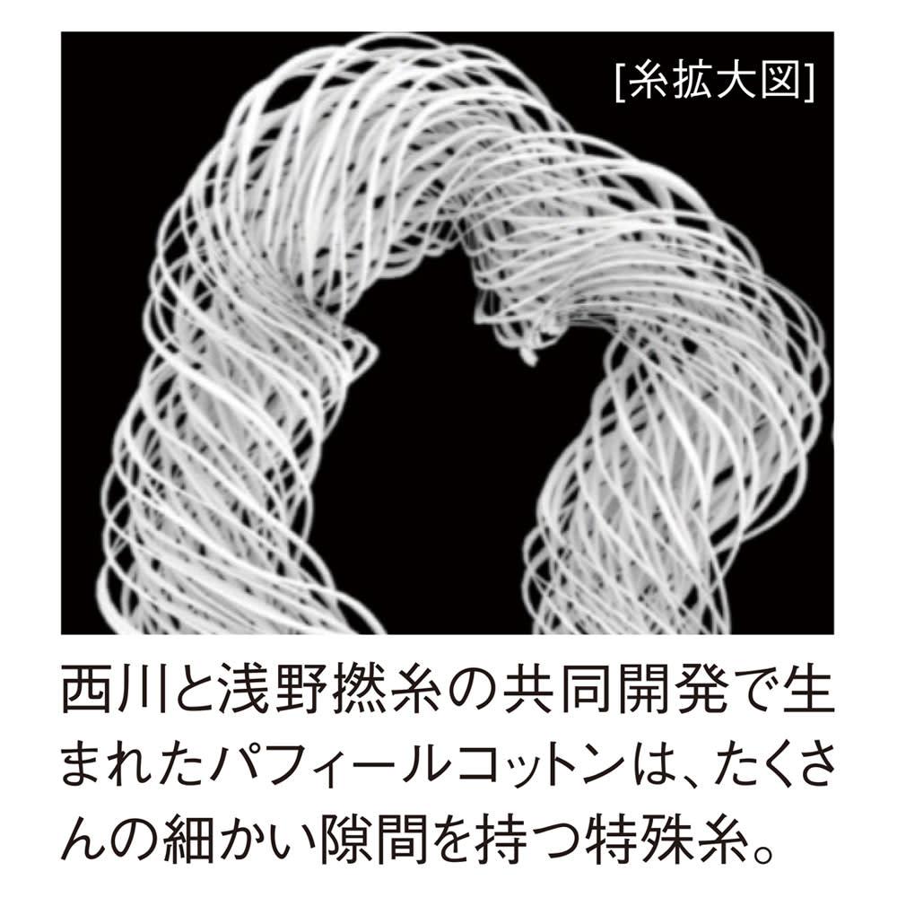 ふんわり とろける肌触り 魅惑の五重ガーゼケット 色が選べるお得なシングル2枚組 西川と浅野撚糸が生んだパフィールコットン