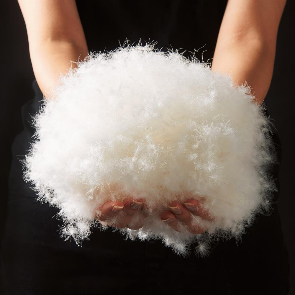 ディノス×西川 特選羽毛掛け布団 増量タイプ クイーンロング フランス産ホワイトダックダウンを贅沢に使用