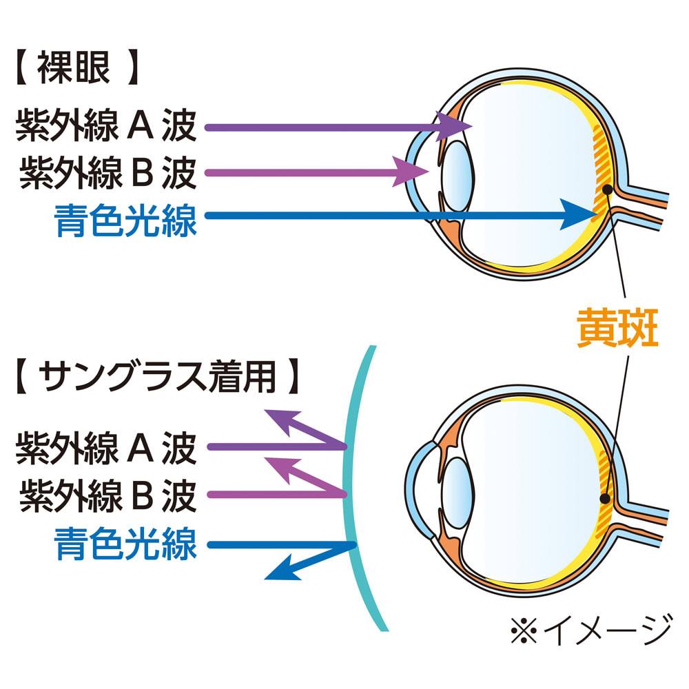オールタイムサングラス CUTE 【身近な青色光線も防ぐべし。】パソコンやスマホを見ていると目が疲れるのは、青色光線の影響があります。これはエネルギーが高く、網膜への負担が大。夜間に浴びると体のリズムまで崩しがちになるうえ、蛍光灯やテレビからも多く出るので、屋内でも対策が必要です。