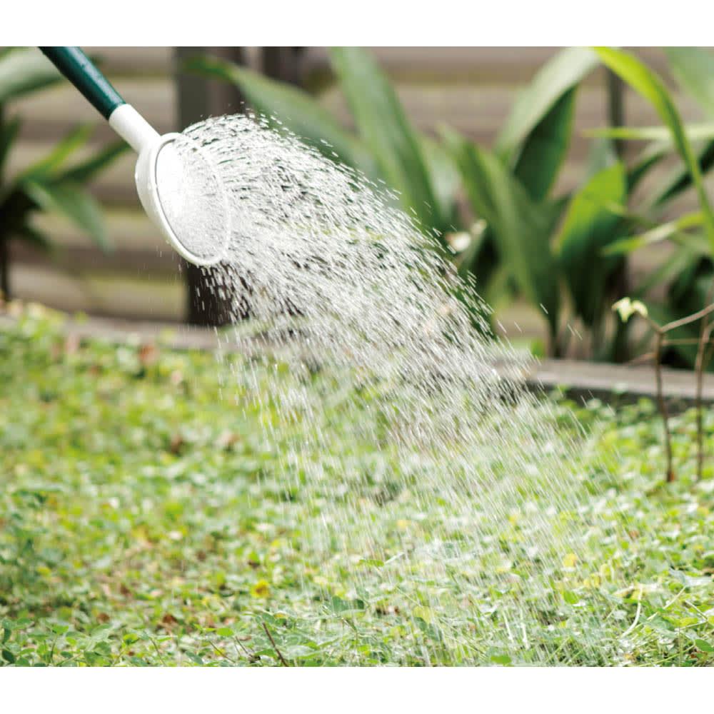 特許取得 植物性除草剤(2本) 水で薄めてまくだけ