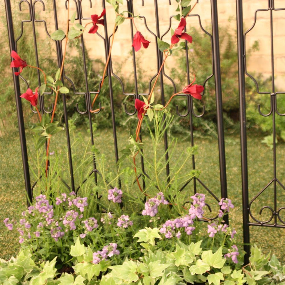 ヨーロピアンフェンス 高さ151cm 4枚組 つる性の植物を這わせてトレリスとしての使い方もおすすめです。