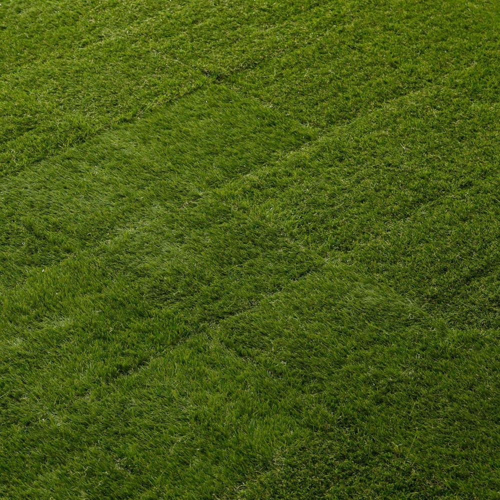敷くだけ人工芝18枚組