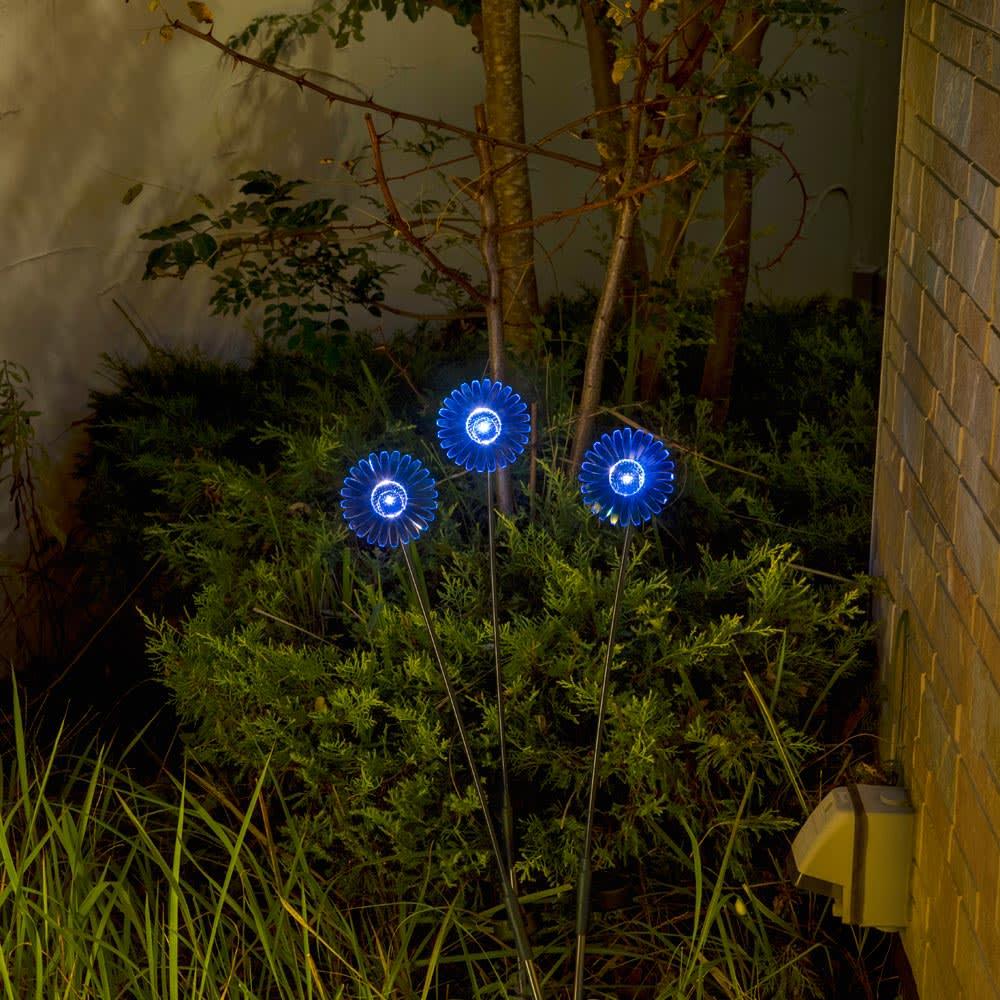 ソーラースティック ガーベラ 3色セット ブルー(点灯時)