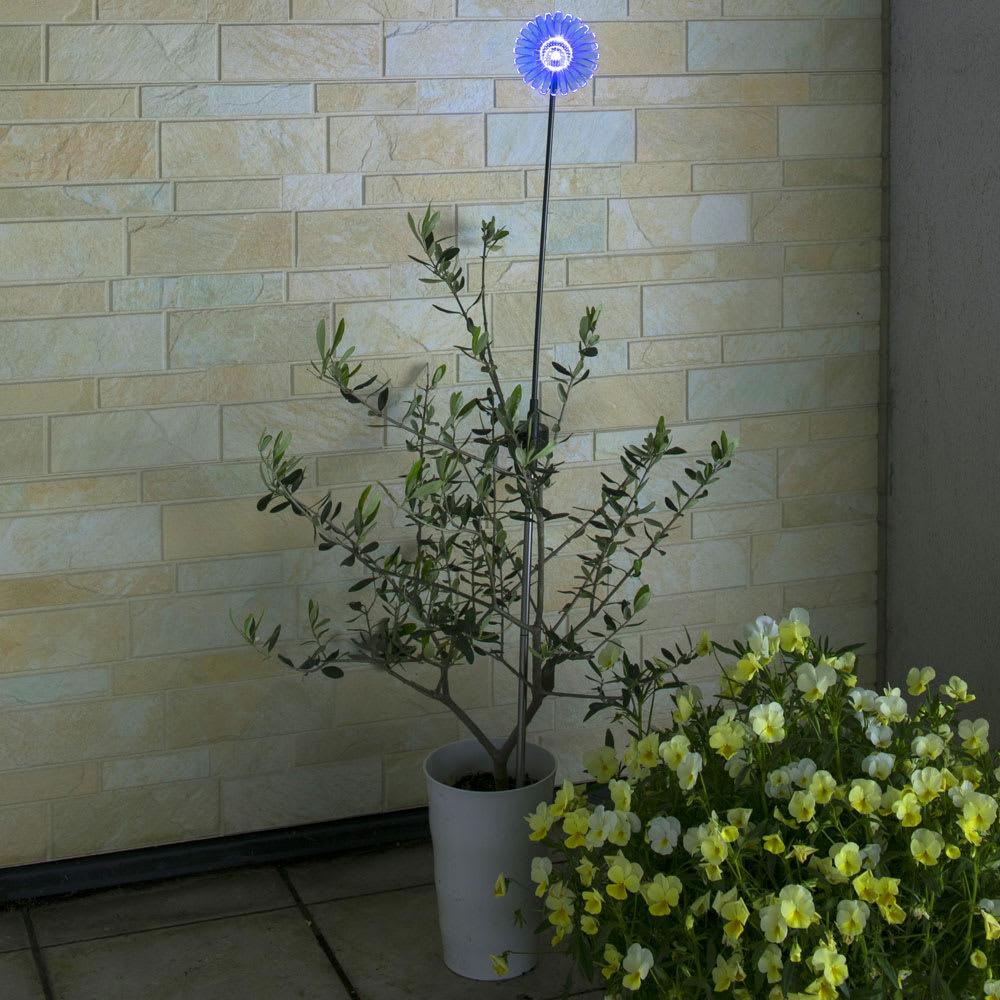 ソーラースティック ガーベラ 3色セット