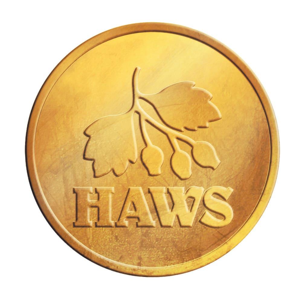 英国HAWS(ホウズ)プラスティックジョウロ 5L