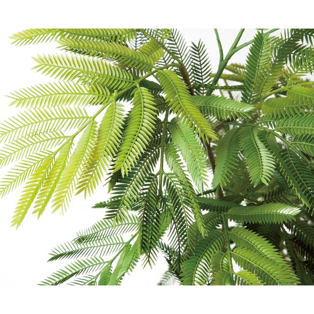人工観葉植物エバーフレッシュ 高さ85cm 色合いの違う3色の葉をミックスしています。