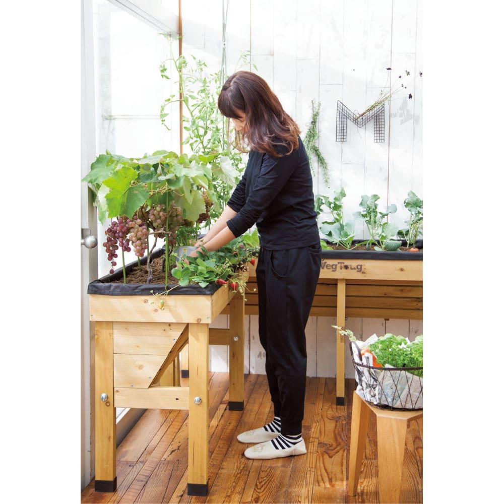 木製菜園プランター ベジトラグ コンパクトミニ 高さがあるので、立ったままで、水やりや植え替えなどがラクにできます。