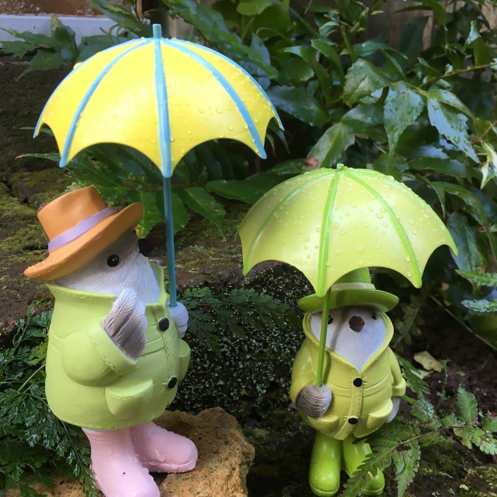 雨降り小鳥 2羽組