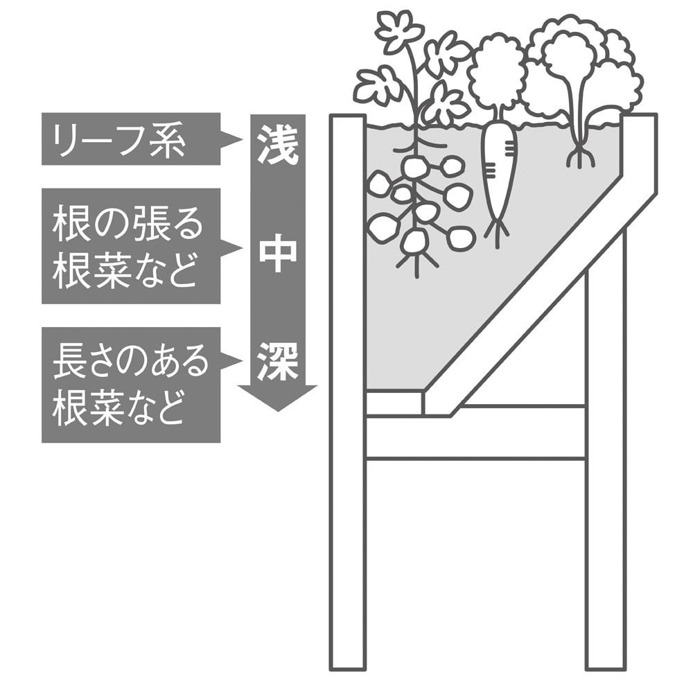 木製菜園プランター ベジトラグ L 【断面図】後ろがフラットな省スペースの独特のV字形状で、深い部分と浅い部分があるので、葉ものから根の張る根菜までさまざまな草丈の品種を一緒に育てられます。